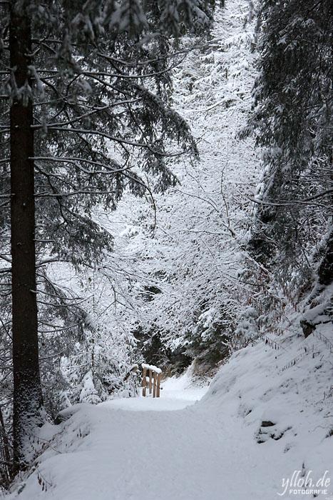 Schneeweg 1