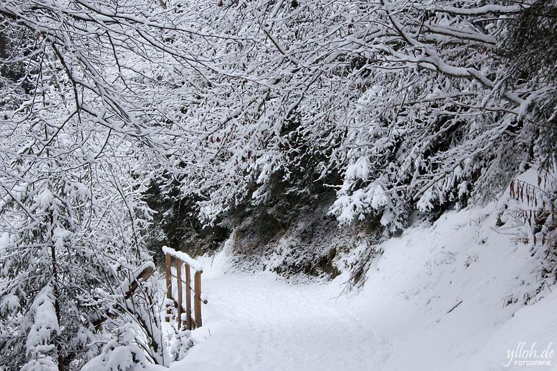 Schneeweg 2